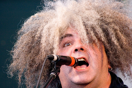 buzz the melvins
